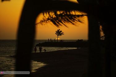 NC15_ls_Sundowner